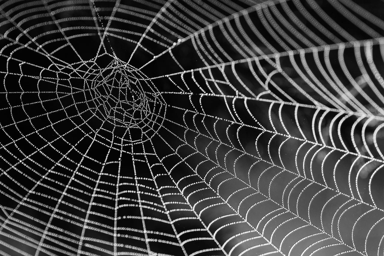 How to host a site on the Dark Web